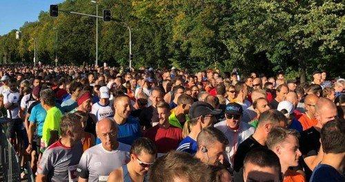 einstein marathon 2019 teilnehmer
