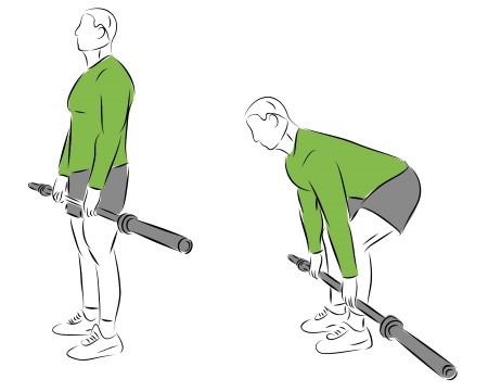 Komplexe Grundübungen für Deinen Muskelaufbau - Das Kreuzheben